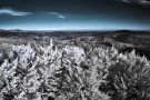 Autumn Bohemian Paradise in infrared spectrum